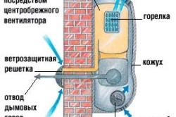 Схема газового конвектора с принудительными наддувом и отводом дымовых газов.