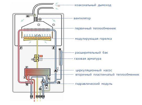 Схема устройства двухконтурного газового котла.