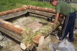 К натуральным утеплителям относится мох. Утеплять им лучше всего при строительстве бани.